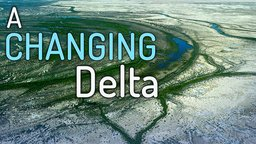 A Changing Delta - Restoring The Colorado River Delta In Mexico